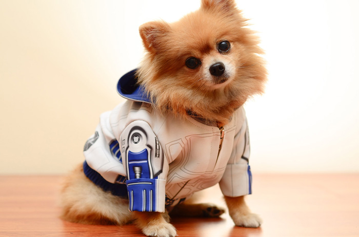 star-wars-roupinha-cachorro (5)