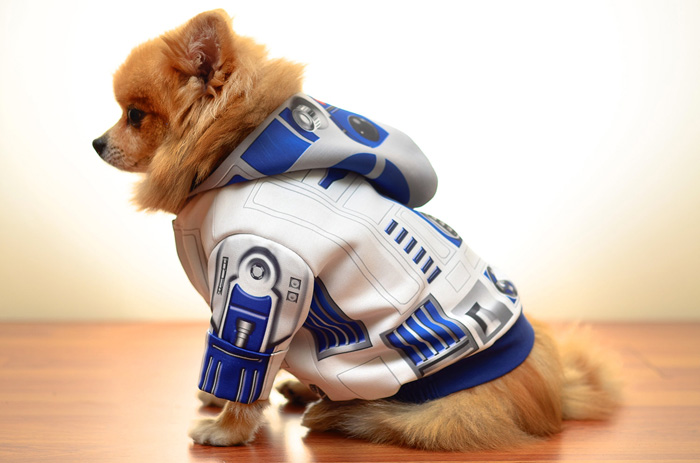 star-wars-roupinha-cachorro (6)