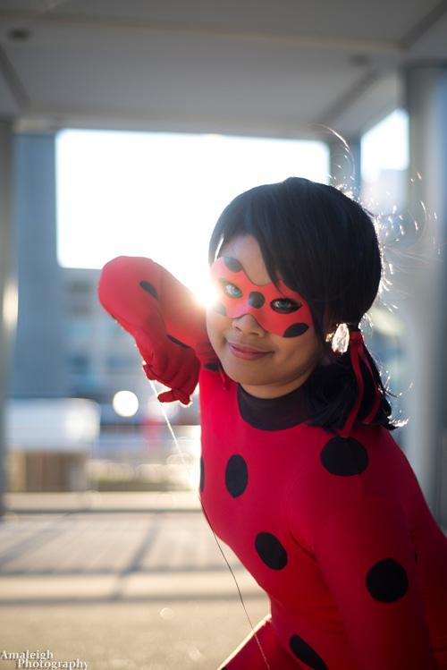 Ladybug e Cat Noir (2)