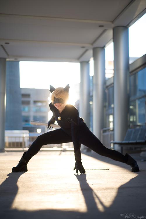 Ladybug e Cat Noir (5)
