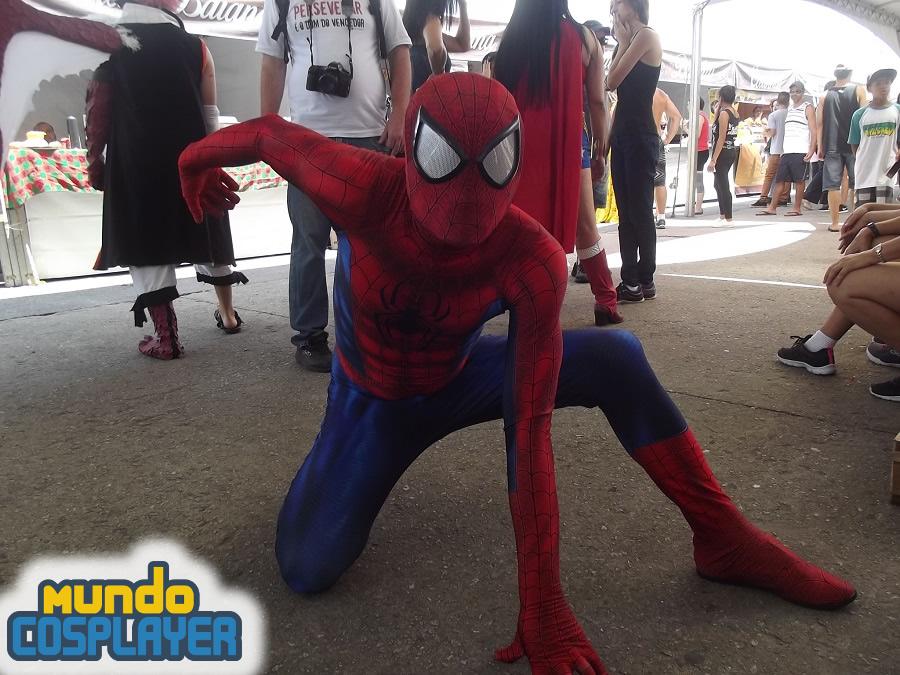 melhores-cosplays-do-encontro-de-cosplays (3)